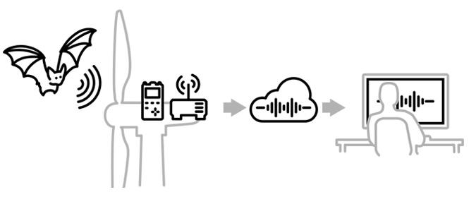 ABO Wind Bat Link System als Erweiterung des GSM-batcorder für die Datenübertragung