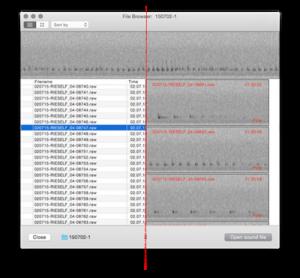 Screenshot des Datei-Browser von bcAnalyze 3